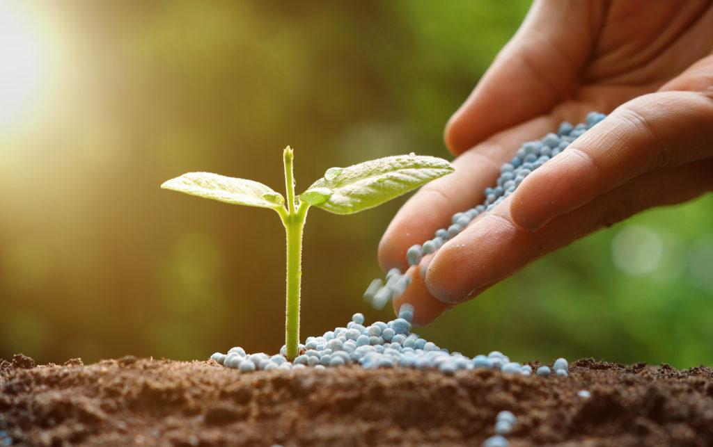 Global Fertilizer Day